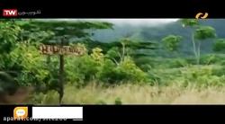 دانلود فیلم خارجی تعقیب کوبنده دوبله فارسی   کامل