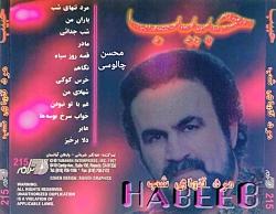 شب جدایی ، حبیب