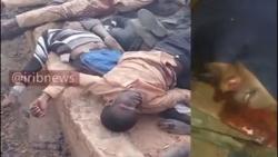 سالگرد کشتار خاموش نیجریه