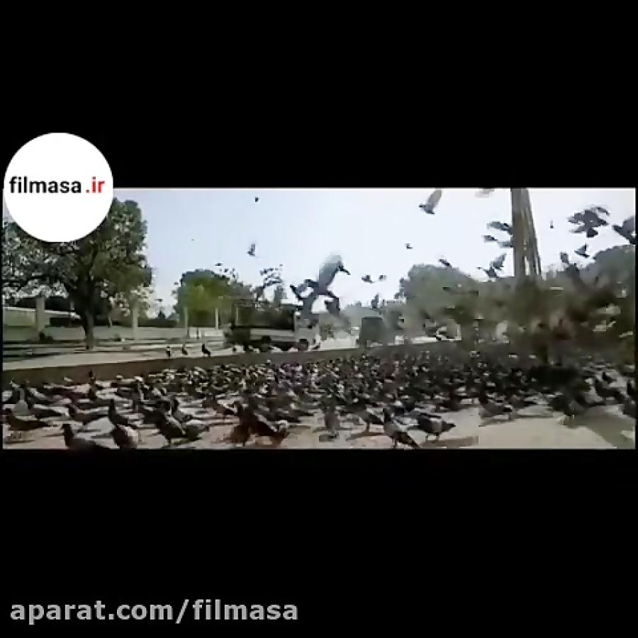 دانلود فیلم شبی که ماه کامل شد | دومین فیلم پرفروش تاریخ سینمای ایران