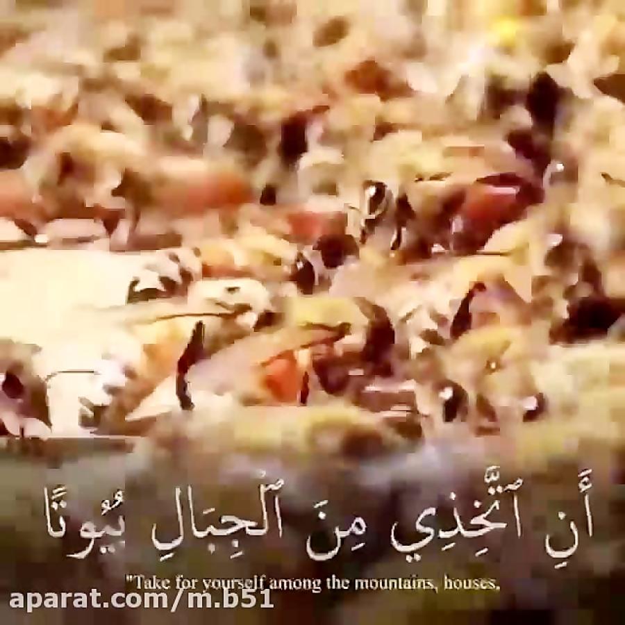 صوت یاسر الدوسری ........