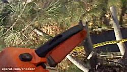 قطع درخت شروع از ارتفاع