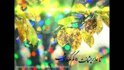 شب یلدای امام زمانی ها/ من مانده ام و یادت با یک شب یلدایی