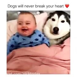 قلب نداره اونی که ببینه ولی لایک نکنه
