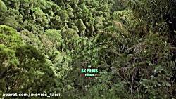 مستند باگـز ماجراجویی در جنگل های بارانی 2003 | دوبله فارسی