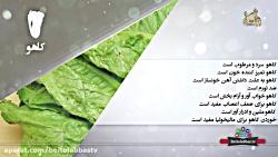 کاهو _ خواص درمانی کاهو _ دانش تغذیه