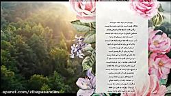 حافظ شیرازی - غزل شماره 69