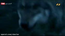 فیلم سینمایی در میان گرگها با دوبله فارسی