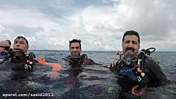غواصی در مالدیو - پیام به همه غواصان