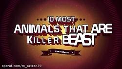 مستند درنده ترین حیوانات وحشی