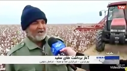 مدیریت تعاون روستایی استان خراسان جنوبی