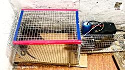 بیست تله موش برقی وحشتناک پیشنهادی برای ساخت در سال 2020 با کیفیت SUPER FULL HD