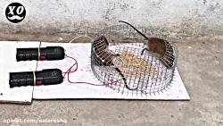 ده تا از ترسناک ترین تله موش های جدید برقی سال 2020 قسمت 2 کیفیت SUPER FULL HD
