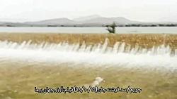 #جویم_بارندگی  جویم/سرریز شدن سد فرشته جان( ۱۵ دیماه ۹۸)  فیلم: آرزو جهان پیما