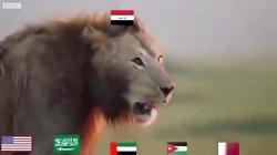 این کلیپ در شبکه های اجتماعی عراقی در پاسخ به گستاخی های کاربران آل سعود