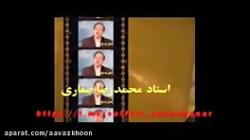 اسامی و معانی واژگان از منظر استاد محمدرضا صفاری
