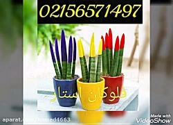 قیمت دستگاه مخمل پاش/اکلیل پاش/دستگاه مخمل پاش صنعتی09190924535