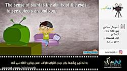 آموزش حواس پنج گانه برای کودکان - این قسمت - حس بینایی