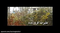 سید کریم غفاری  ( تله فیلم  شیوا )