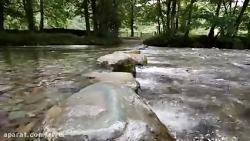 نقاشی رودخانه با آبرنگ
