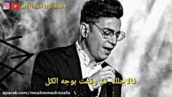 محسن ابراهیم زاده - بىقرارم