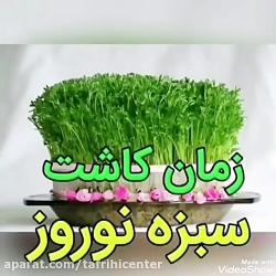 زمان کاشت چند نوع سبزه عید