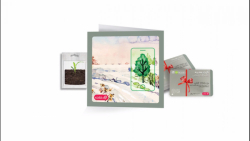 کارت های هدیه کتابته همراه با یک بسته شگفتانه