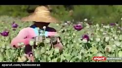 شهری ممنوعه در میانمار