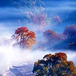 طبیعت زیبای پاییز