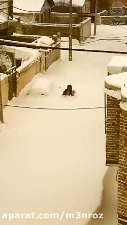 عجیب اما واقعی ! دفن شدن شهرستان خلخال زیر برف ...