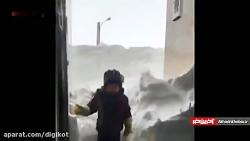 بارش کم سابقه برف خلخال در ۵۰ سال اخیر؛ گرگ در شهر پرسه میزند