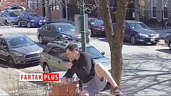 لحظه وحشتناک حمله سگ به دوندهای که در حال ورزش بود