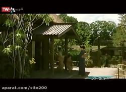 دانلود فیلم سامورایی خاموش | اکشن جنگی | سینمایی | دوبله فارسی