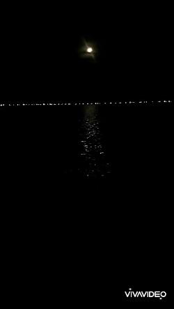 تایم لپسی زیبا از لحظه محو و طلوع مجدد ماه در آسمان شب