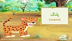 انیمیشن   حیوانات وحشی ...