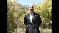 پرویز نادرزاده