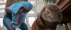 فیلم سینمایی (پیتر خرگوشه) دوبله فارسی