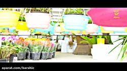 واحد نوپا گروه بارشیک( گل فروشی پری ناز)