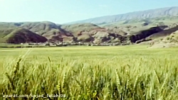 sajad_fatahi98