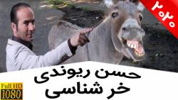 حسن ریوندی - خر شناسی از...
