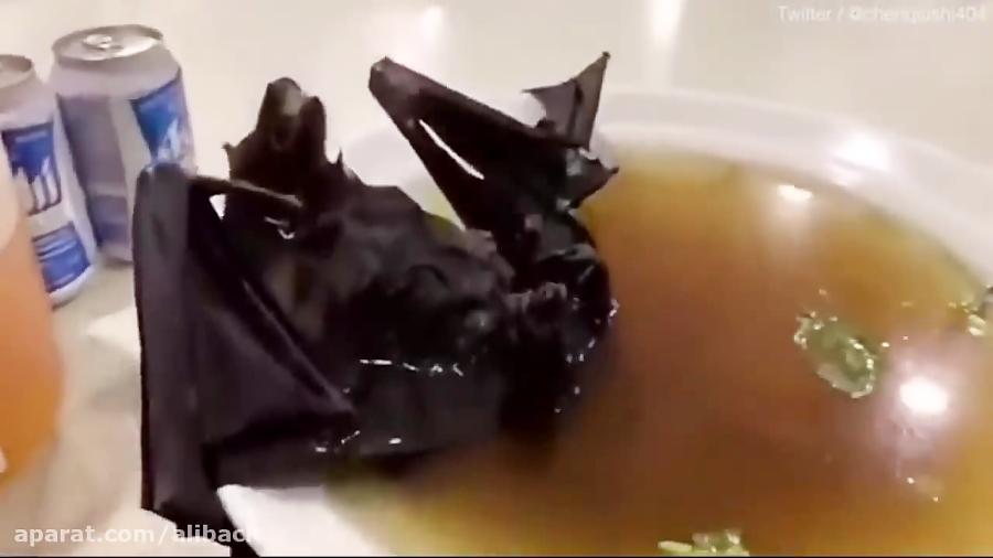 سوپ خفاش در ووهان چین