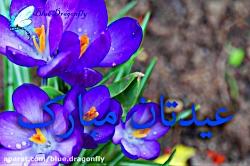 تبریک عید - کلیپ تبریک عید - -تبریک ولایت حضرت محمد - عید مبعث مبارک