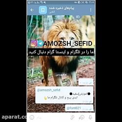 amozsh_sefid