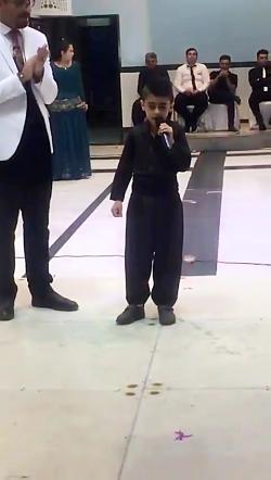 محمدشیخه پور