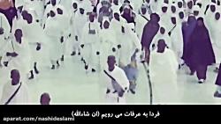 سرود زیبای عرفه/ شیخ منصور السالمی