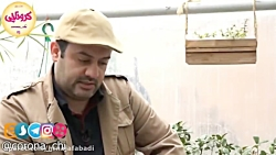 hrnajafabadi