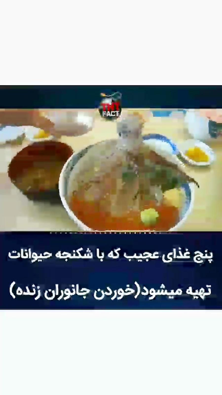 پنج غذای عجیب چینی