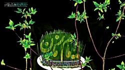 کلیپ تبریک میلاد امام ز...