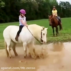 اسب بچه رو میندازه توی گل(۵۸۳)