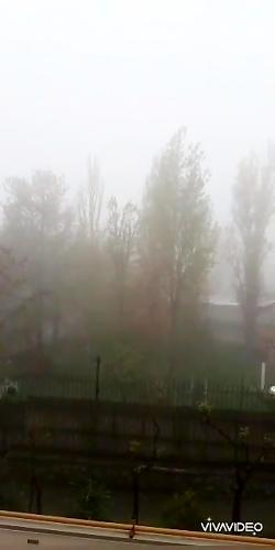 تهران در مه بهاری ۱۳۹۹